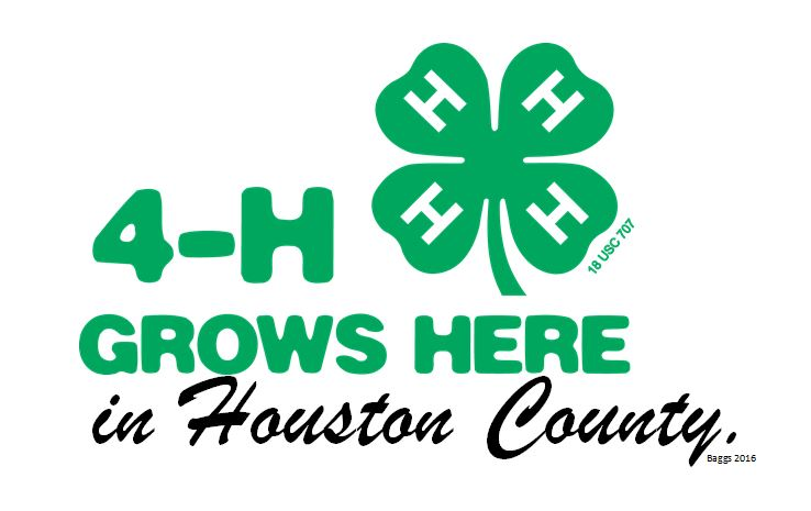 4 h grows here