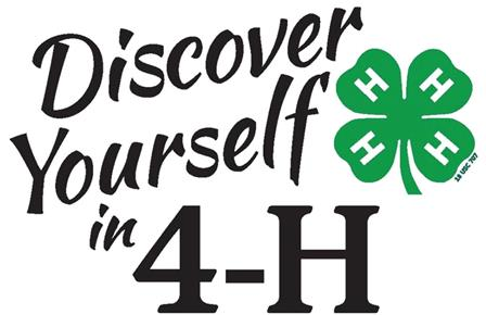 4 H Project Achievement Paulding County