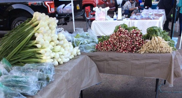 Fresh cool season Vegetables