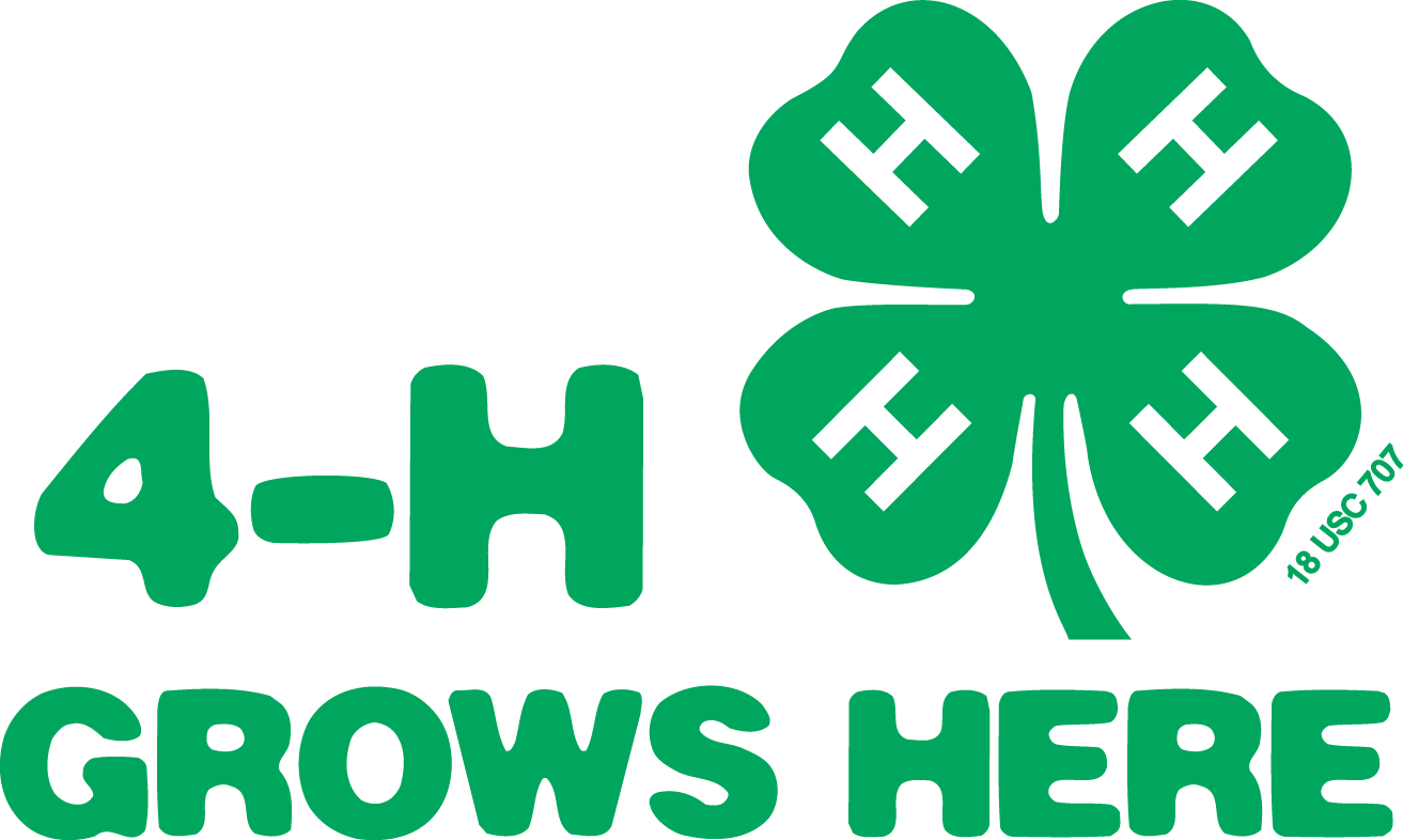 Georgia 4-H Website