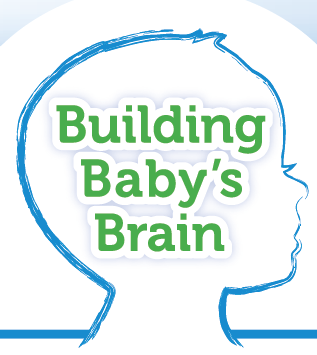 Building Baby's Brain Series