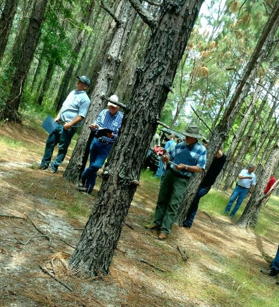 Forestry Training