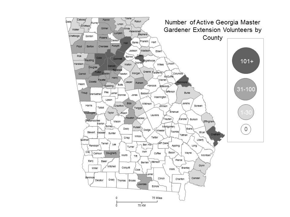 Georgia map showing number of active Master Gardener Extension Volunteers by county