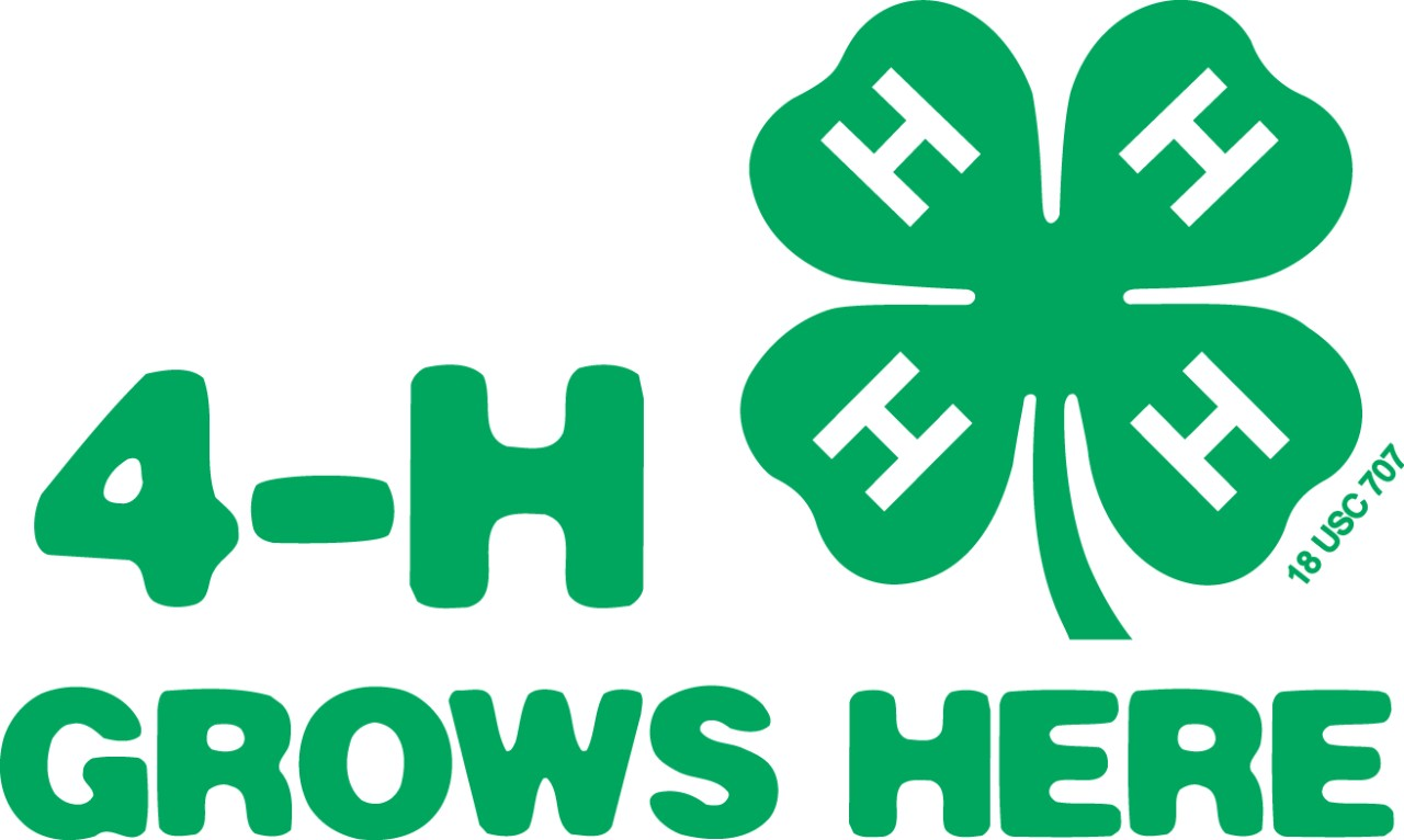 4-H Youth Development | Brooks County