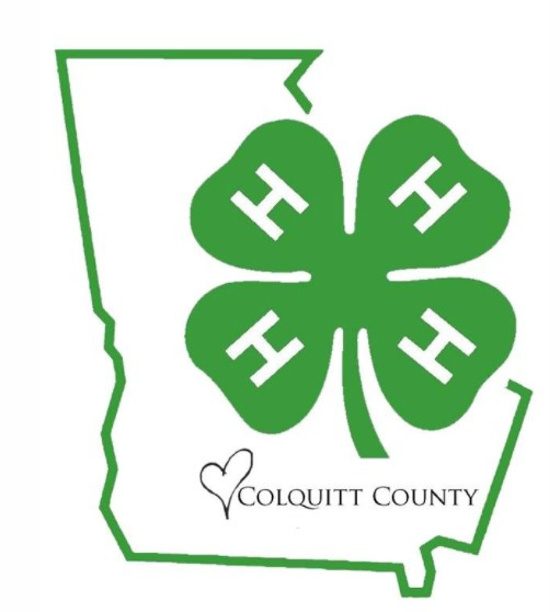 4 H Youth Development Colquitt County