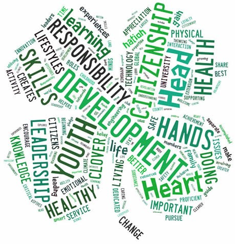 cloverwordcloud6