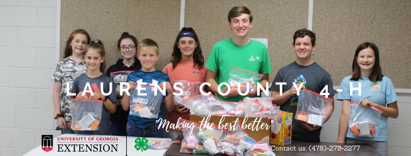 Laurens County 4-H